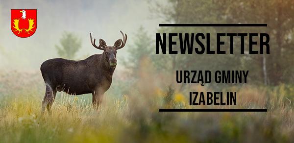 Banner newslettera - w tle łoś w lesie, w części głównej herb gminy Izabelin oraz napis Newsletter - Urząd Gminy Izabelin.